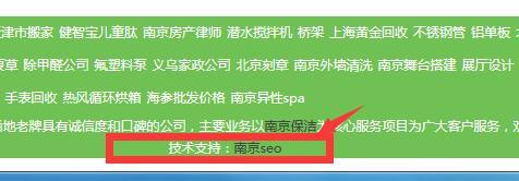 网站SEO优化技术支持标识
